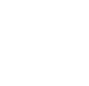 Aaliyah Love All You Need Is Love Logo